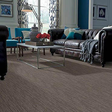 Anso® Nylon Carpet | Bowie, MD